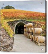 Autumn Wine Cave Acrylic Print