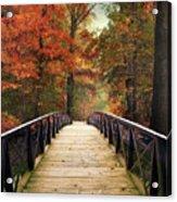 Autumn Woodland Crossing Acrylic Print