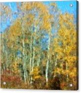Autumn Woodlot Acrylic Print