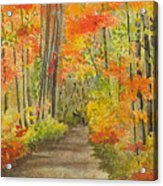 Autumn Woods Acrylic Print