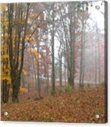 Autumnal Mist Acrylic Print