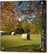 Autumnal Scenery Along Helmstetler Road Acrylic Print