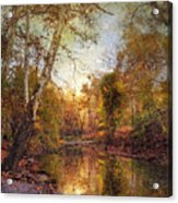 Autumnal Tones 2 Acrylic Print