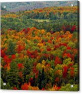 Autumns Colors Acrylic Print