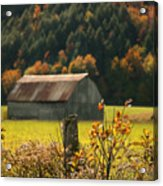Autumns Colors Acrylic Print by Sandra Cunningham