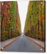 Autumn's Colours Acrylic Print