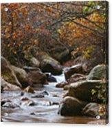 Autumns Flow Acrylic Print