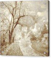 Autumn's Last Breath Acrylic Print