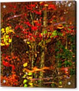 Autumns Looking Glass 2 Acrylic Print