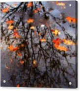 Autumns Looking Glass 3 Acrylic Print