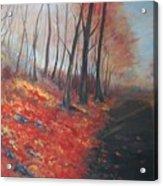 Autumns Pathway Acrylic Print