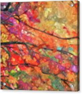 Autumns Splendorous Canvas Acrylic Print