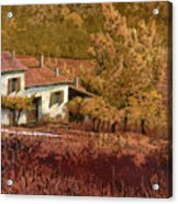 Autunno Rosso Acrylic Print