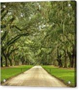 Avenue Of The Oaks Acrylic Print