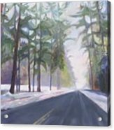 Avenue Of The Pines-winter Acrylic Print