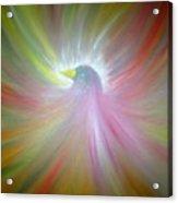 Aves I Acrylic Print