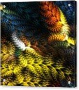 Avian Dreams 2 Acrylic Print