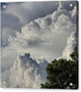 Awesome Cloulds And A Pine Tree Acrylic Print