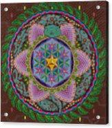 Ayahuasca Acrylic Print