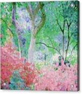 Azalea Flowers And Tree Coral  Acrylic Print