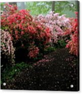 Azalea Pathway Acrylic Print