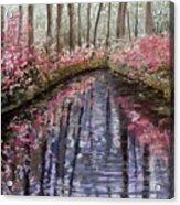 Azalea River Acrylic Print