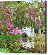 Azaleas And Bridge In Magnolia Lagoon Acrylic Print
