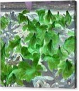 Azaleas In Negative Acrylic Print