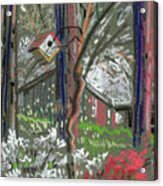 Azaleas In Spring Acrylic Print