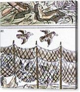 Aztec Fishermen Acrylic Print