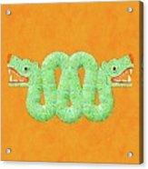 Aztec Serpent Acrylic Print
