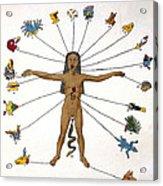 Aztec Zodiac Man, Medical Astrology Acrylic Print