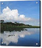 Azul Reflexion Acrylic Print
