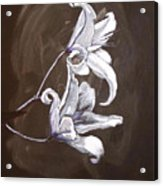 B And W Lily Acrylic Print
