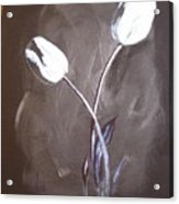 B And W Tulips Acrylic Print