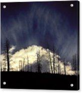 Sun Fire Acrylic Print