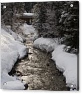 Babbling Brook, Early Spring, Lake Louise, Alberta Acrylic Print