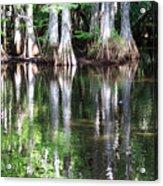 Babcock Wilderness Ranch - Alligator Lake Reflections Acrylic Print