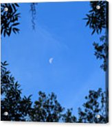 Babcock Wilderness Ranch - Daytime Moon Over Babcock Acrylic Print