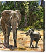 Baby And Mom Elephant Painting Acrylic Print