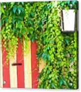 Back Alley Color Acrylic Print