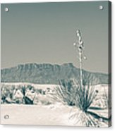 Back Country Acrylic Print