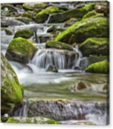 Back Country Stream Acrylic Print