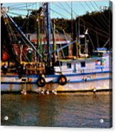 Back From A Long Day At Sea Acrylic Print