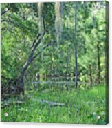 Back In Time In Florida Acrylic Print