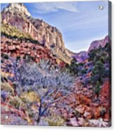 Back Of Zion Acrylic Print