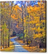Back Road Fall Foliage Acrylic Print