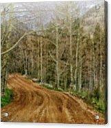 Back Road Home Acrylic Print