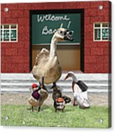 Back To School Time Acrylic Print