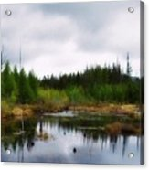 Backcountry Lake - Adirondacks Acrylic Print